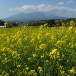 八ヶ岳の環境